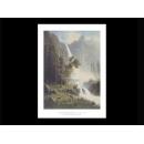 y09416 複製畫 Bierstadt 貝爾斯特-優勝美地瀑布 (B1422)