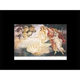y00237 複製畫 Botticelli 勃迪西尼-維納斯誕生(B461)