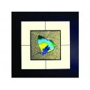 蝴蝶(2) y03011 玻璃壁飾系列