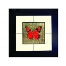 蝴蝶(6) y03007 玻璃壁飾系列