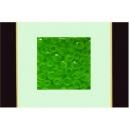 綠玫瑰 y12965 玻璃壁飾系列