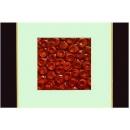 紅玫瑰 y12964 玻璃壁飾系列