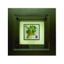 水琉璃-苦瓜 y13049 水琉璃系列