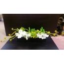 長黑盆造型花藝-y15357-花藝設計.花材果樹