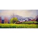 風景鄉村油畫-y12810-風景鄉村油畫(另有其他尺寸)