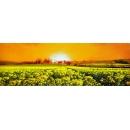 風景鄉村油畫系列-y12819-油畫 - 風景鄉村油畫系列(另有其他尺寸)