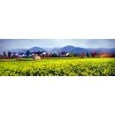 風景鄉村油畫系列-y12820-油畫-風景鄉村油畫系列(另有其他尺寸)