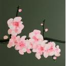 y14026 畫作系列-油畫- 油畫花系列- 櫻花(粉色)