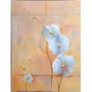 y14158 畫作系列 - 油畫 - 油畫花系列- 蘭花(二) 可訂製