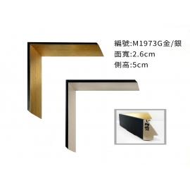 y16244- 畫框框條 M1973G金.M1973SB銀