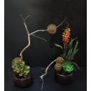雙盆造型花藝/對-y15327-花藝設計.花材果樹