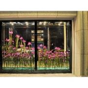 (案例)景觀營造、櫥窗佈置