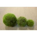 y13704 庭園造景-人工草皮-草綠球(大) 另有尺寸