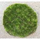 y13706 庭園造景-人工草皮- 綠青苔草皮(圓形)