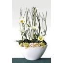 y13731  花藝設計 玄關.電視櫃盆花 造型花藝