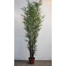 y13857 花藝設計.花材果樹- 人造樹- 8尺紫竹樹