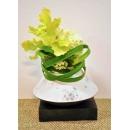y14403 花藝設計 - 玄關桌.電視櫃盆花 - 飛碟花器(622003)造型花藝