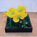 斑草蘭造型花藝設計 (y14556花藝設計- 玄關桌.電視櫃盆花)