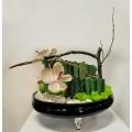 劍骨花藝造型設計 (y14558花藝設計- 玄關桌.電視櫃盆花)