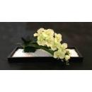 花藝造型設計 (y14560花藝設計- 玄關桌.電視櫃盆花)