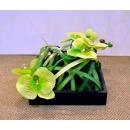 斑草蘭花藝造型設計 (y14561花藝設計- 玄關桌.電視櫃盆花)