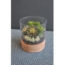 有水座圓柱玻璃花藝y15276-花藝設計.花材果樹