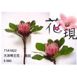 y15869 花藝設計-精緻人造花-枝花-大洋帝王花(玫紅色)共2色