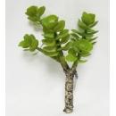 y15884 花藝設計-精緻人造花-多肉植物-薄葉金錢樹枝