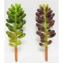 y15888 花藝設計-精緻人造花-多肉植物-極光 共2款顏色 綠.紫綠