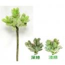y15890 花藝設計-精緻人造花-多肉植物-5叉兔耳蘭 共2款顏色 深綠.淺綠