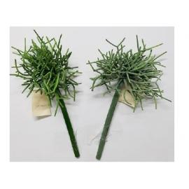 y15892 花藝設計-精緻人造花-多肉植物-多枝仙人掌  共2款顏色 綠.淺綠