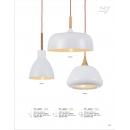 無印簡約烤漆吊燈(y14757 燈飾 吊燈)