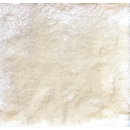 仿羊毛系列 y15599 (IVORY)地毯桌旗抱枕布品-地毯.壁毯.踏毯-長毛地毯160x230CM--象牙色