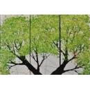 大樹油畫/3入一組-y15373-畫作系列