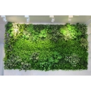植栽牆-y16186花藝設計.花材果樹 花藝設計-壁式花藝(植栽牆)
