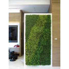 植栽牆-y16189花藝設計.花材果樹 花藝設計-壁式花藝(植栽牆)