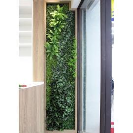 植栽牆-y16190花藝設計.花材果樹 花藝設計-壁式花藝(植栽牆)