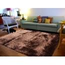 常見問題:【地毯處理劑該怎麼購買使用呢】