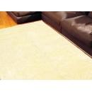 常見問題:【地毯與牆壁處會有細小的灰塵,有時麼預防方法嗎】
