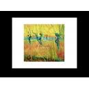 y00295 複製畫 Van Gogh梵谷-Pollarded 楊柳和日落MF35