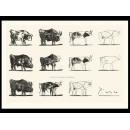 y01432畢卡索Picasso複製畫Le taureau (serigraph)  P278