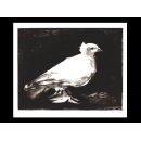 y01435畢卡索Picasso複製畫La petite colombe (serigraph)  P348