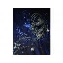 y02077-聖誕節-星空