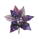 y02143-花材-珠光聖誕紅(紫)