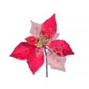 y02167-花材-紋金聖誕花(紅)