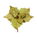 y02168-花材-彩繪聖誕花(綠)
