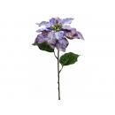 y02183-花材-聖誕花(紫)
