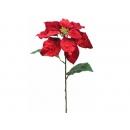 y02184-花材-聖誕花(紅)