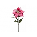 y02194-花材-大彩蔥聖誕花(粉紅色)