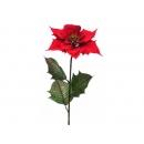 y02197-花材-聖誕花